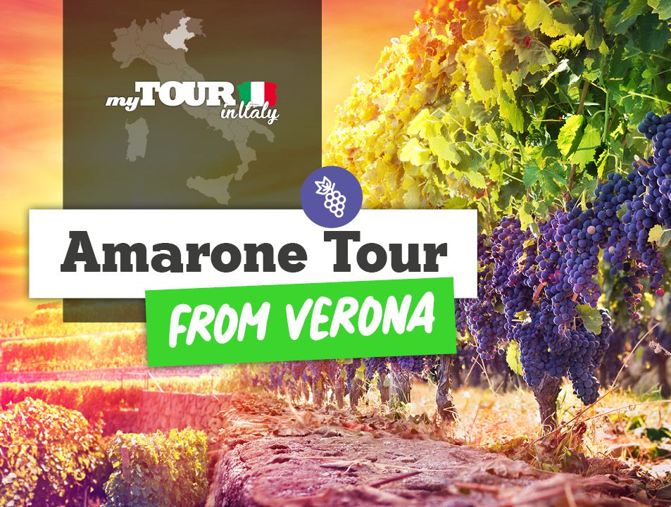 Amarone Wine Trail Tour with Lunch from Verona – Verona, Italy