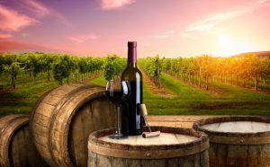 Chianti wineries: which ones to visit?