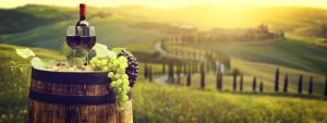 What To Do In Chianti Area
