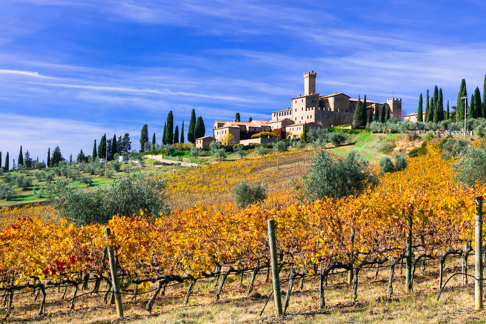 What to do in Montalcino | Things to do – myTour in Italy