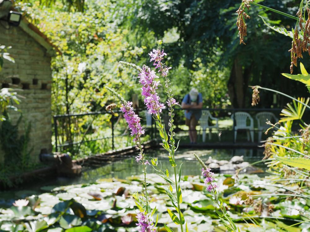 Ferrara Botanical Gardens