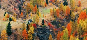 Read more about the article Top 5 Italian destinations to enjoy fall season